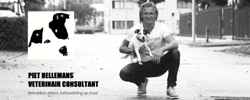Piet Hellemans Veterinair Consultant