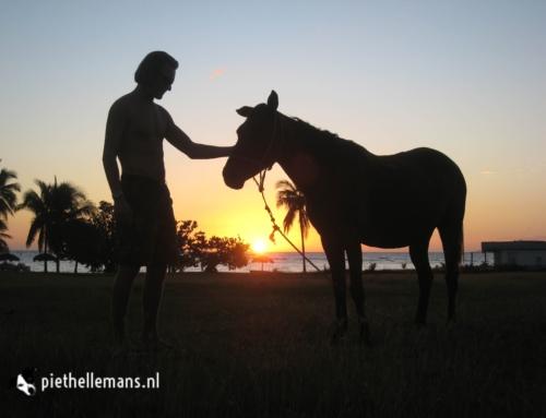 #TBT – Paardje knuffelen op Cuba 2008