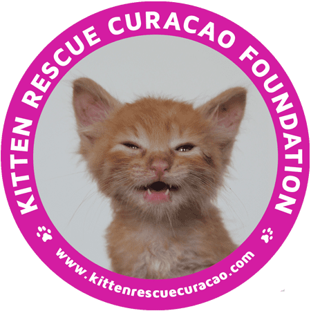 Stichting Kitten Rescue Curacao